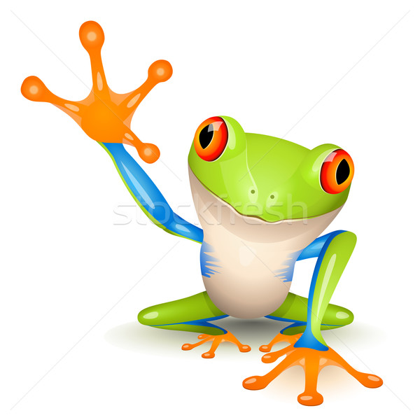 Red Eyed Tree Frog clipart forest #12