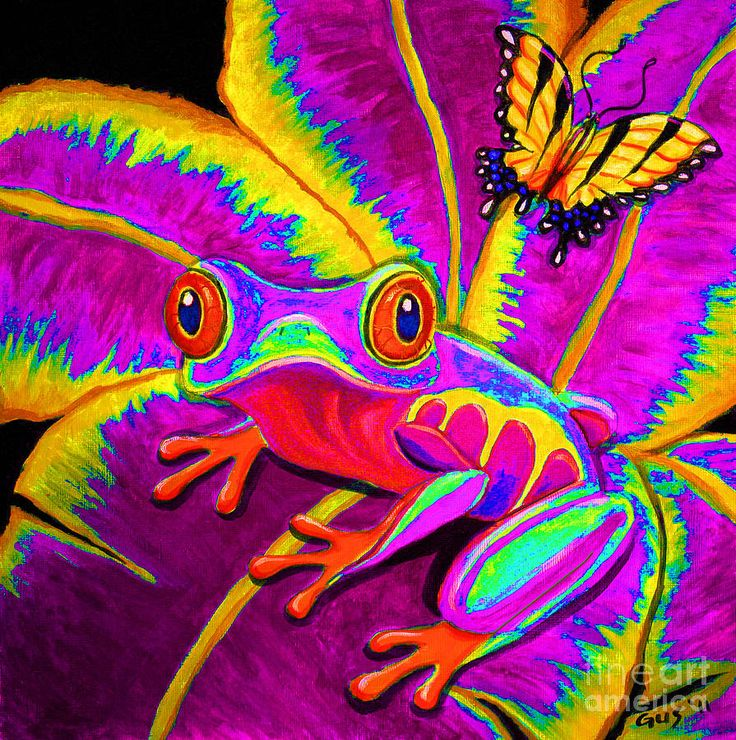 Red Eyed Tree Frog clipart rainforest butterfly #7
