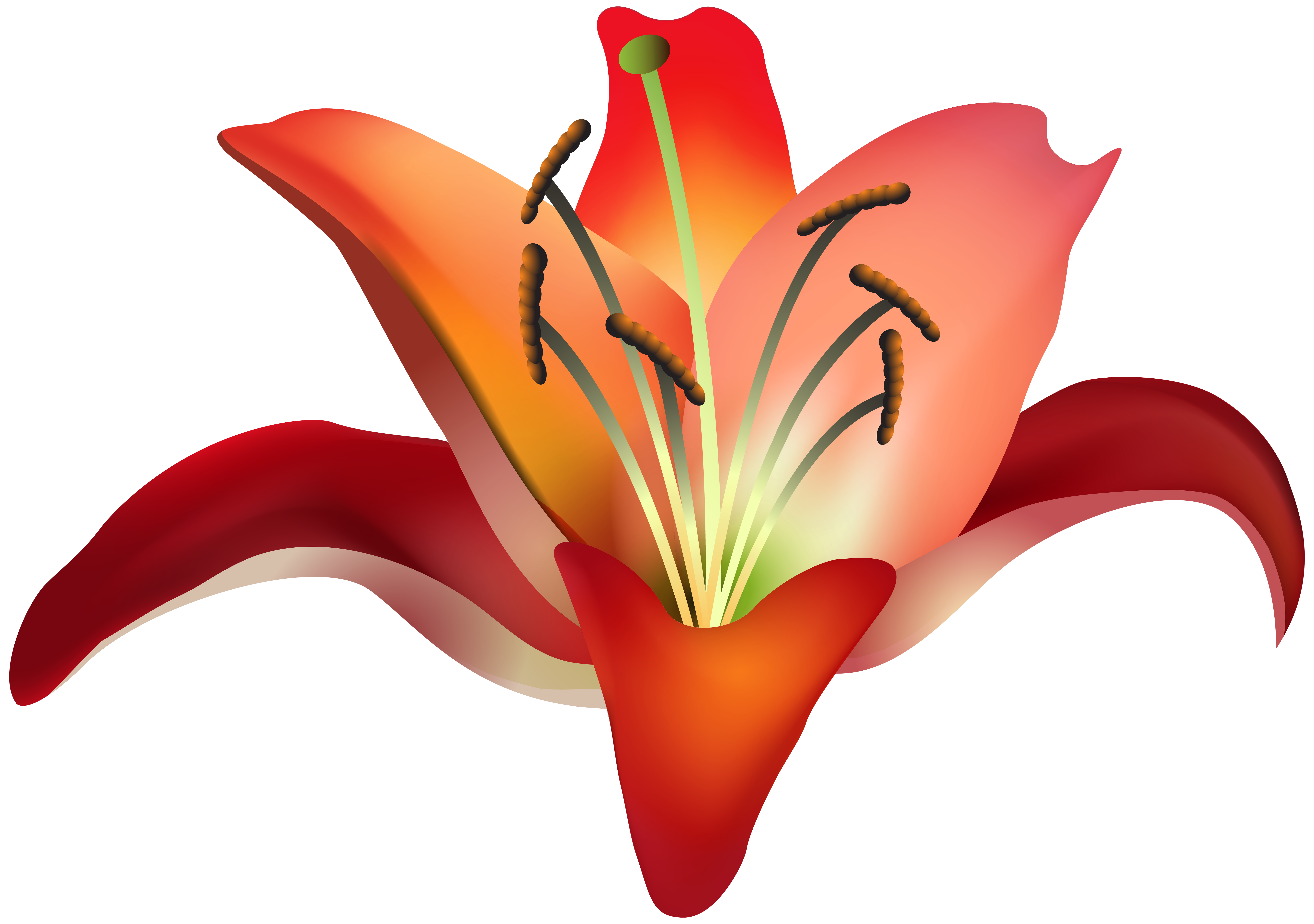Red Flower clipart nice view #13