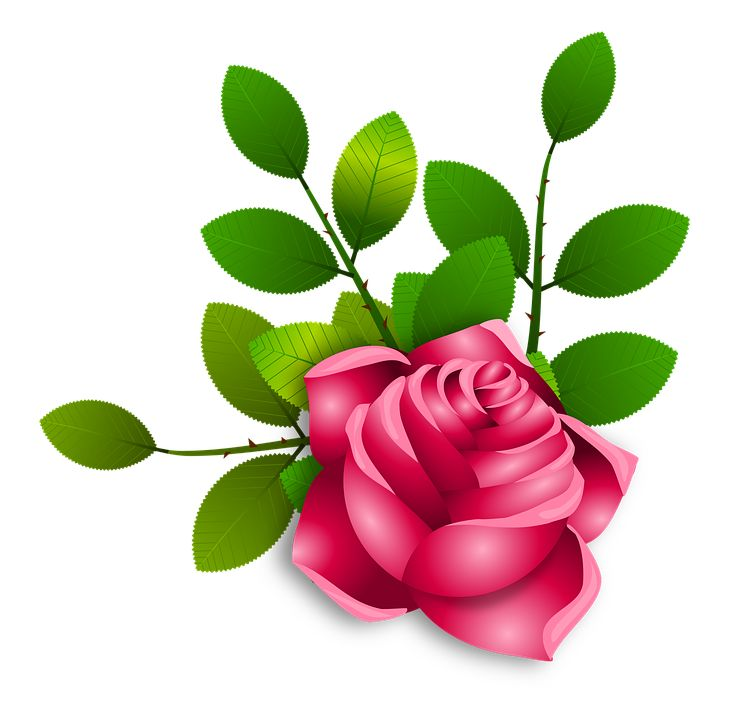 Red Flower clipart planter #7