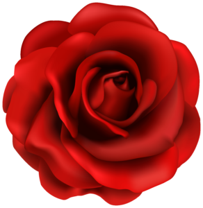 Red Flower clipart r0se #6
