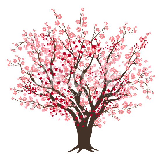 Blossom clipart bloom Red Tree art stock free