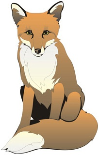 Red Fox clipart clever #7