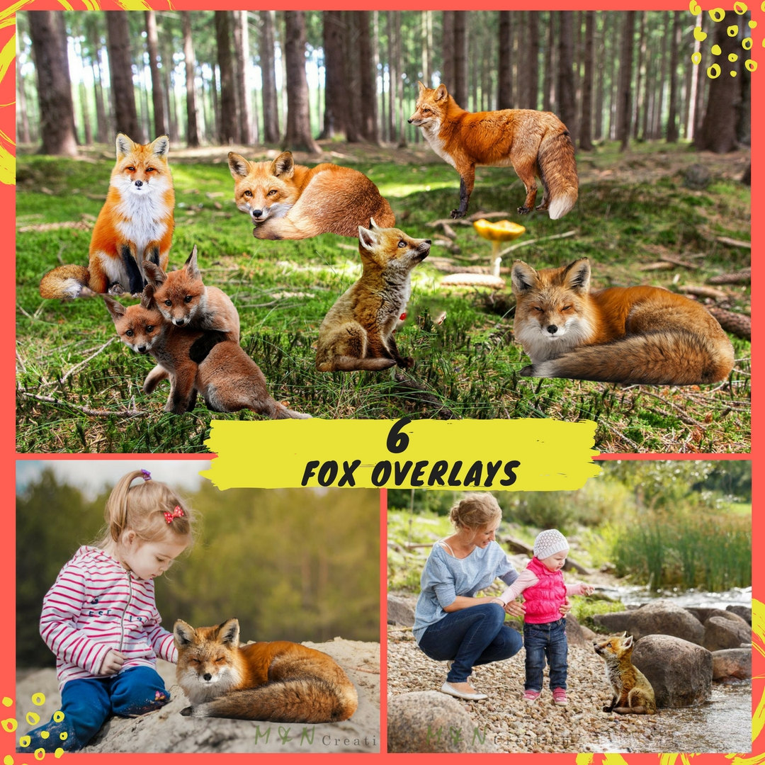 Red Fox clipart guides #12