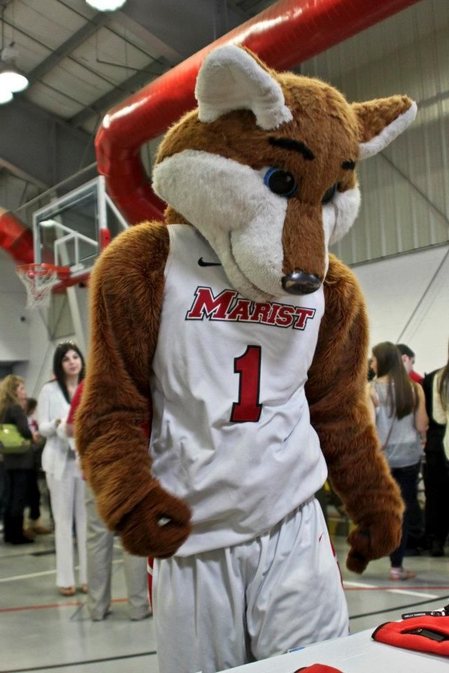 Red Fox clipart marist Athletics Pinterest 55 images on