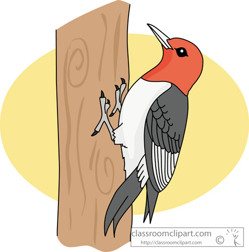 Red Headed Finch clipart Headed_woodpecker_630 Clipart red : Bird