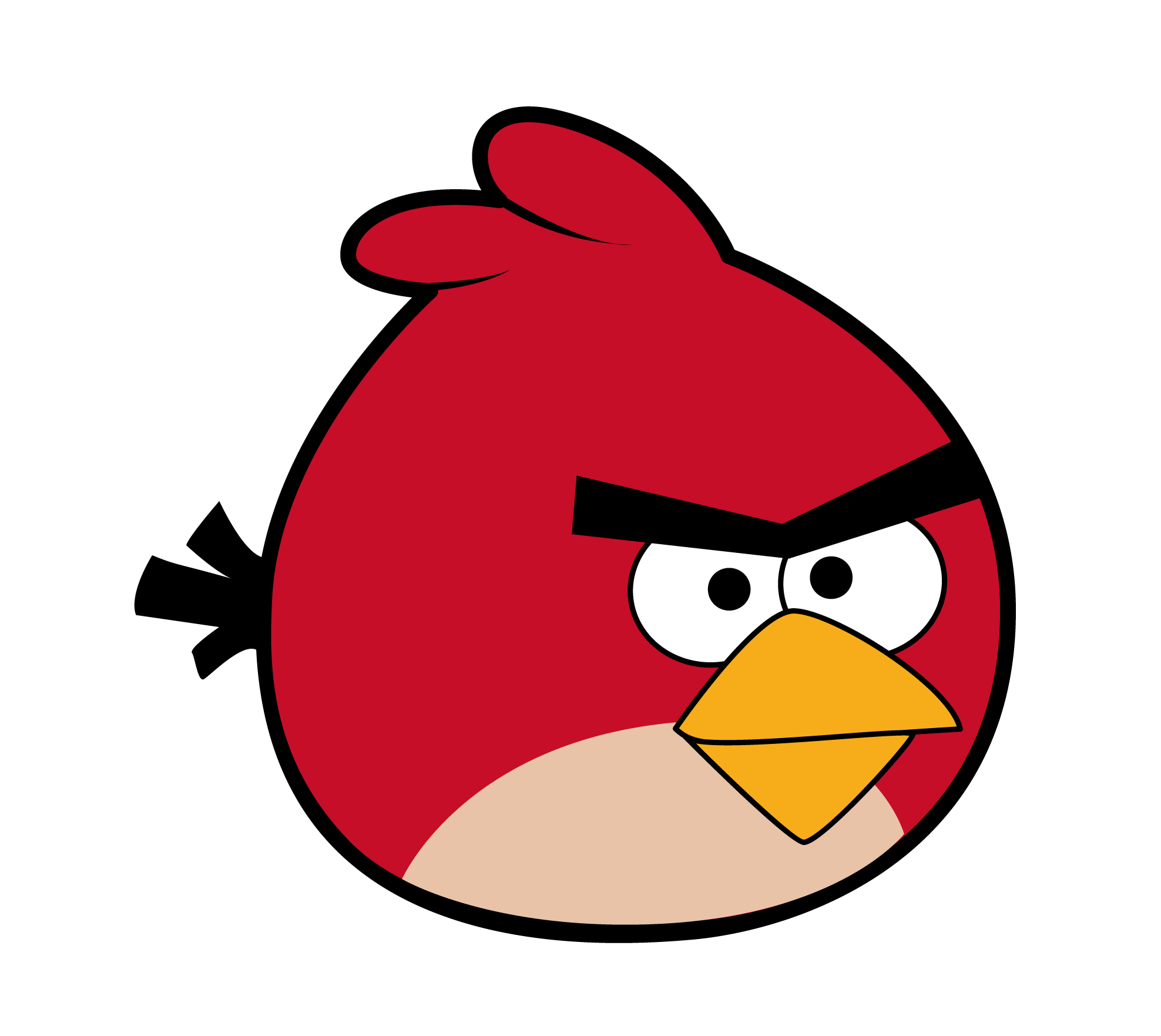 Bird clipart face Clipart Finch Finch Red drawings