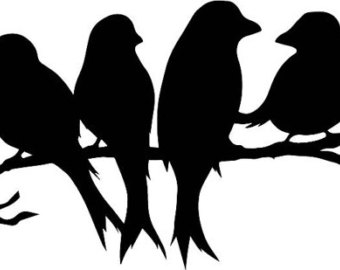 Red Headed Finch clipart black and white #3