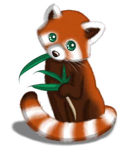Drawn red panda animated Search illustration panda RED red
