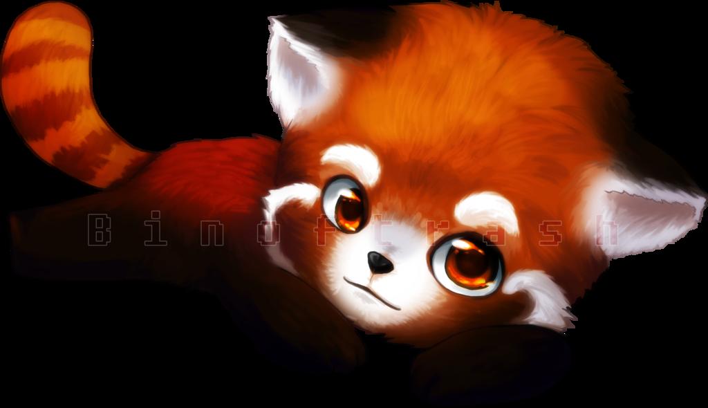 Drawn red panda kawaii PNG Panda Red Transparent All