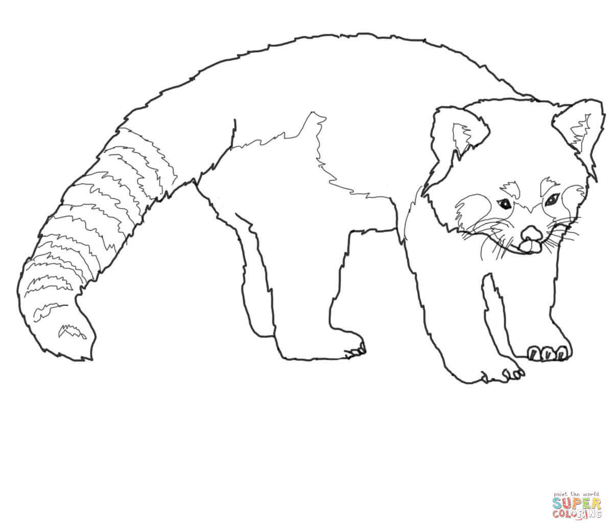 Red Panda clipart black and white #15