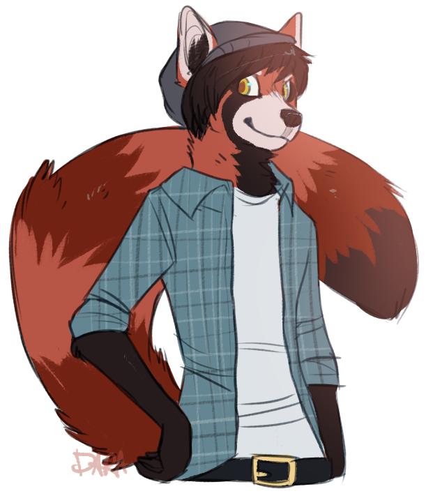 Drawn red panda furry Panda : Red 7bwJY6r png