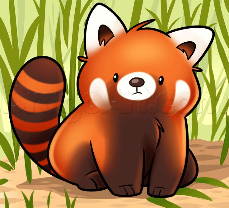 Drawn red panda endangered Draw red best red images