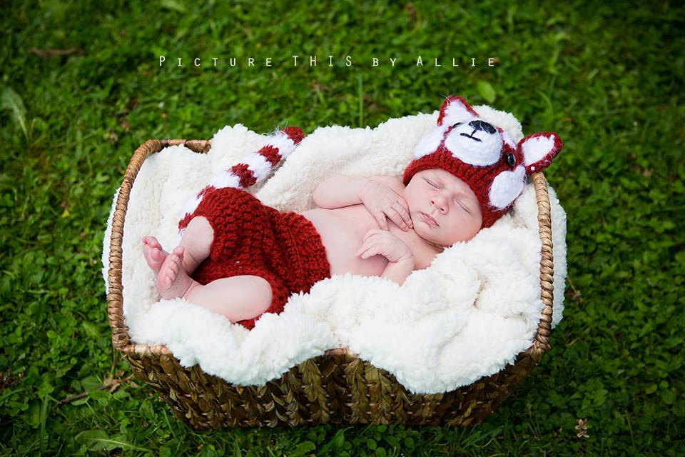 Red Panda clipart newborn Panda Set/ Red Like Panda
