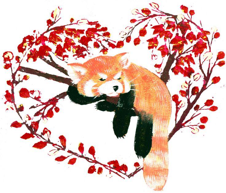 Drawn red panda tailed Mind Panda about wanderlust: 328