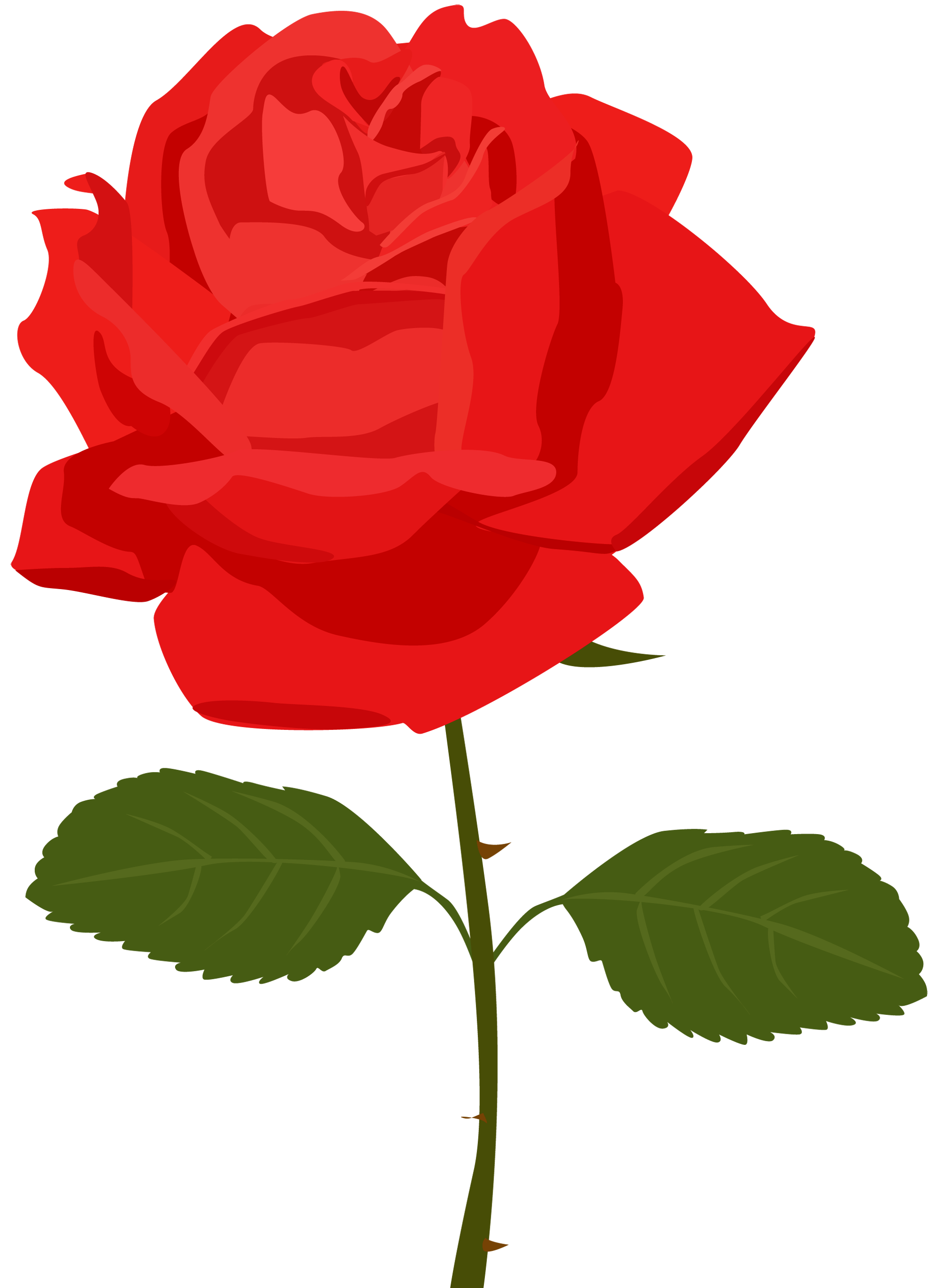 Red Rose clipart Free Clip Free library