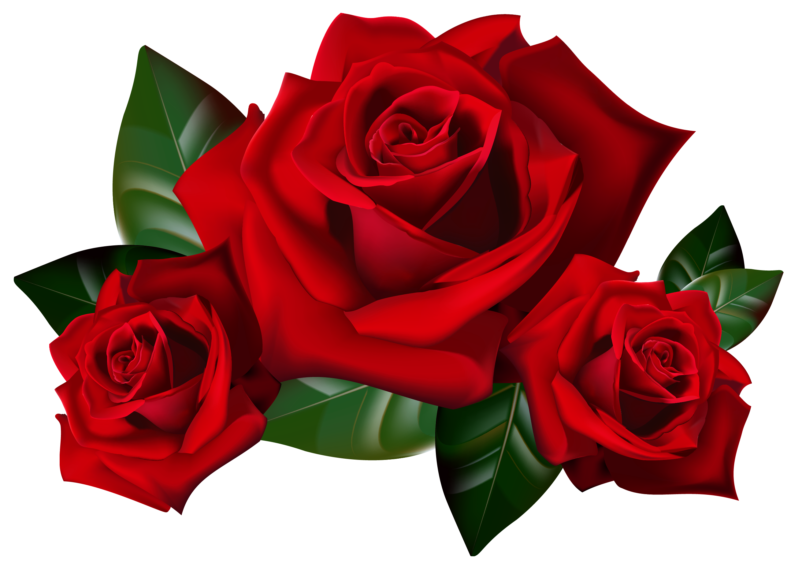Red Flower clipart valentine rose #8