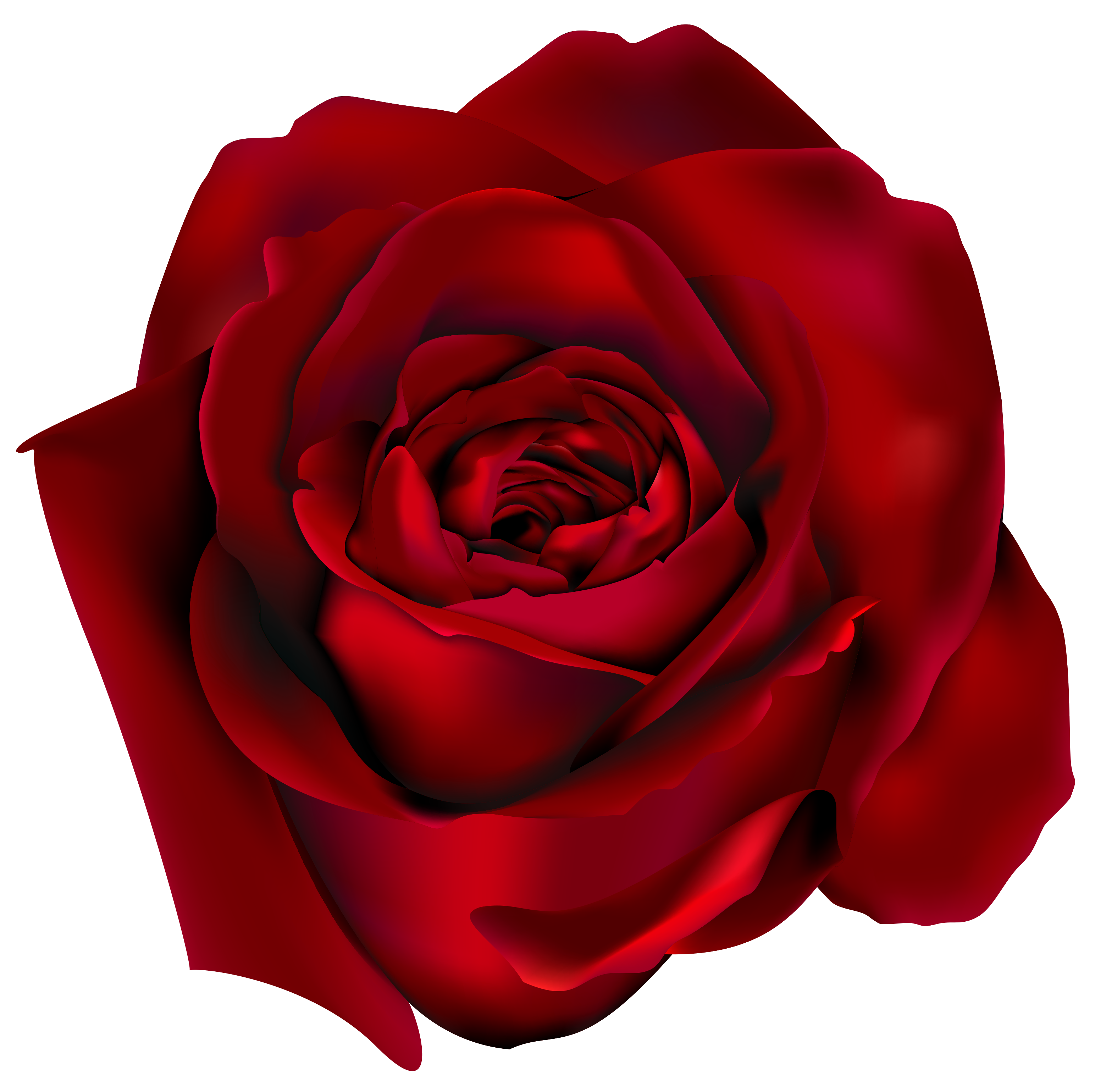 Red Rose clipart 109 clip Clipart rose art