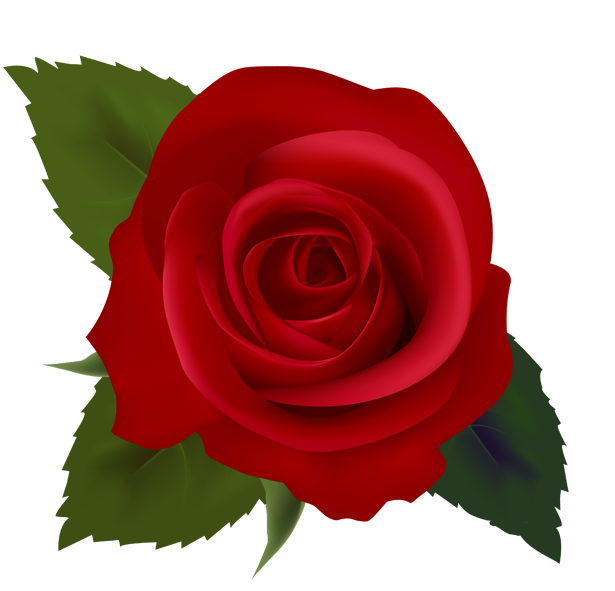 Red Rose clipart Panda Clip Clip Art Clipart