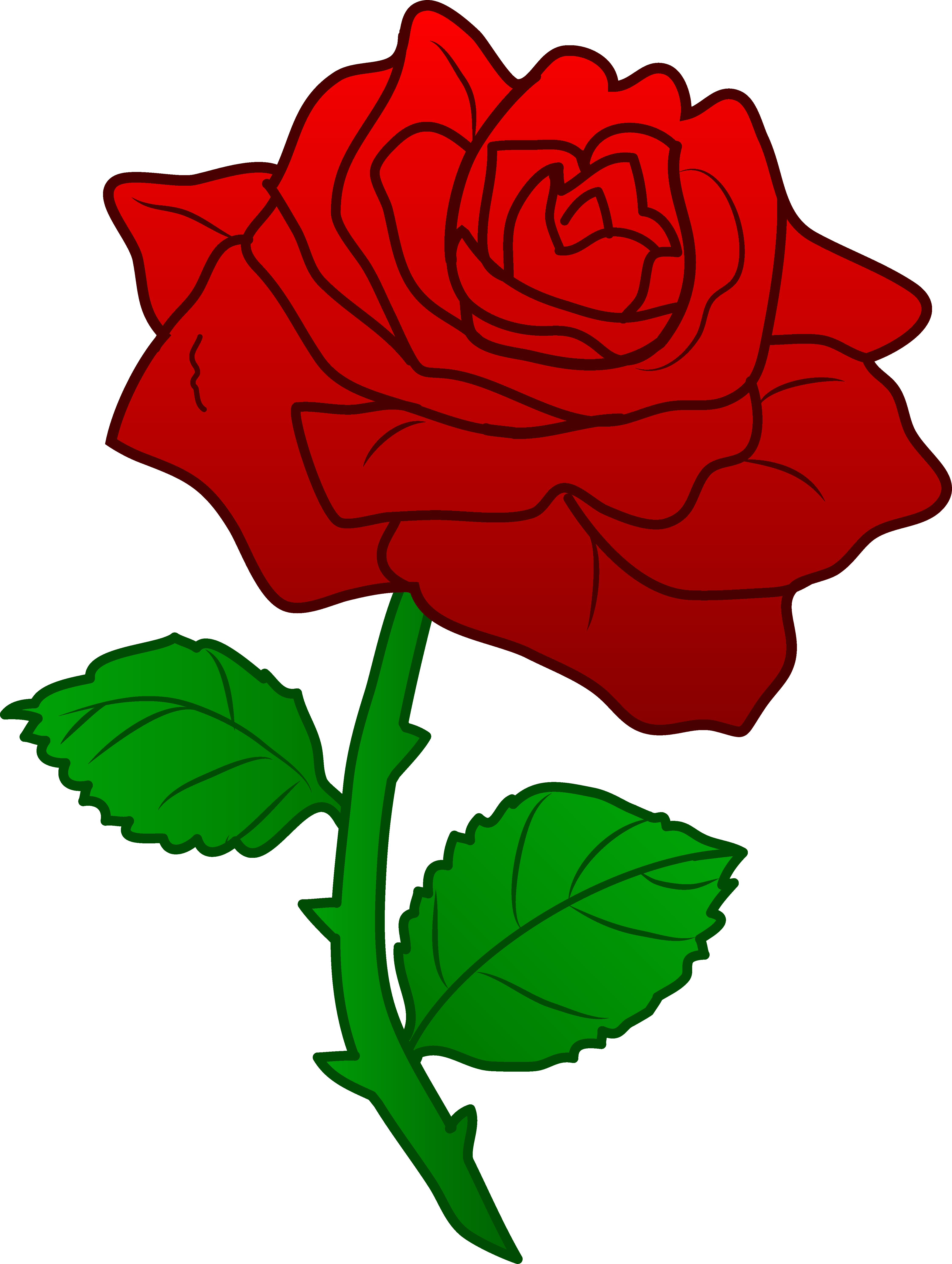 Drawn red rose thorn clipart Clipart Download clipart #19 clipart