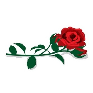 Red Rose clipart decorative #3