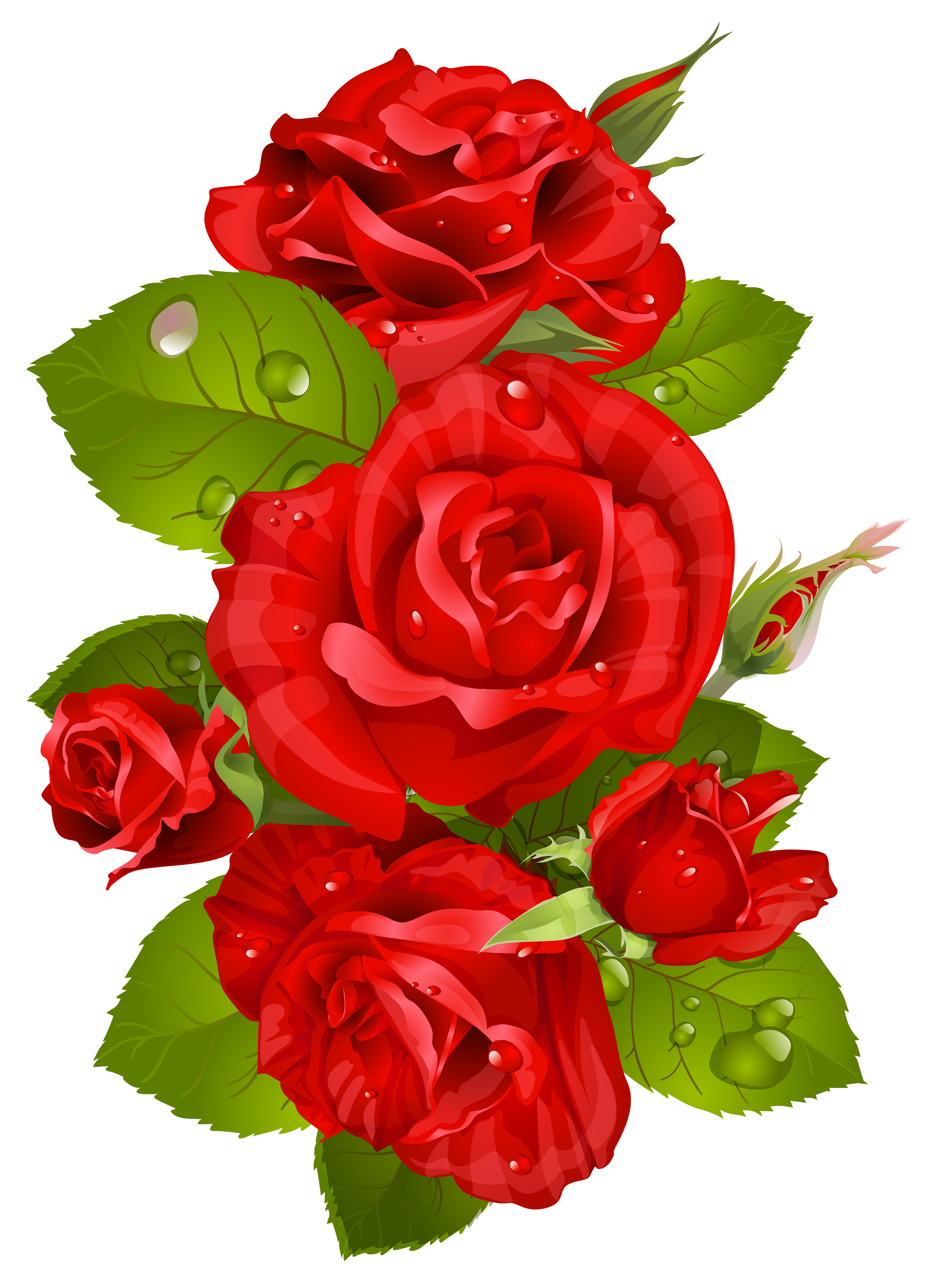Red Rose clipart decorative #10