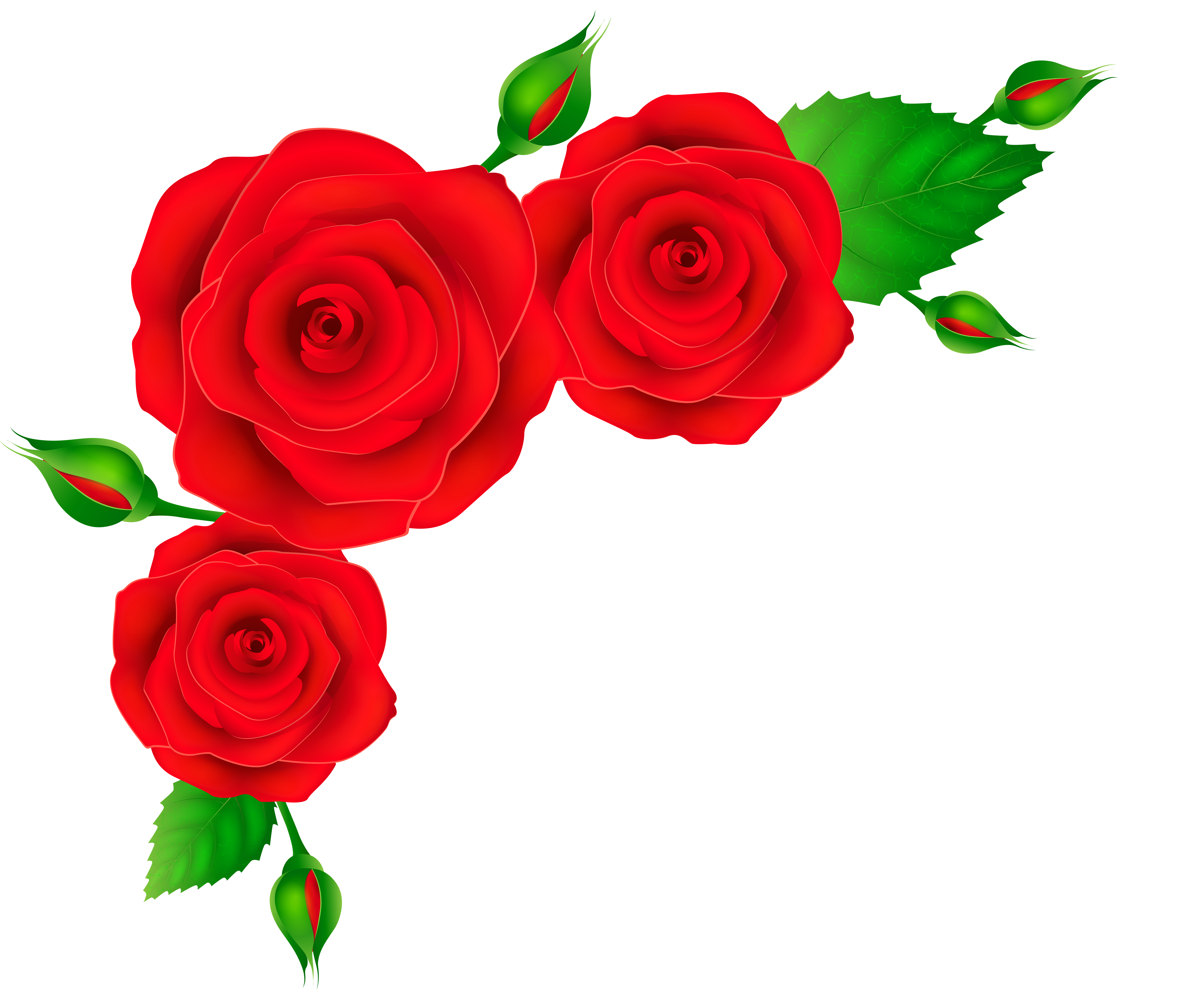 Red Rose clipart decorative #9