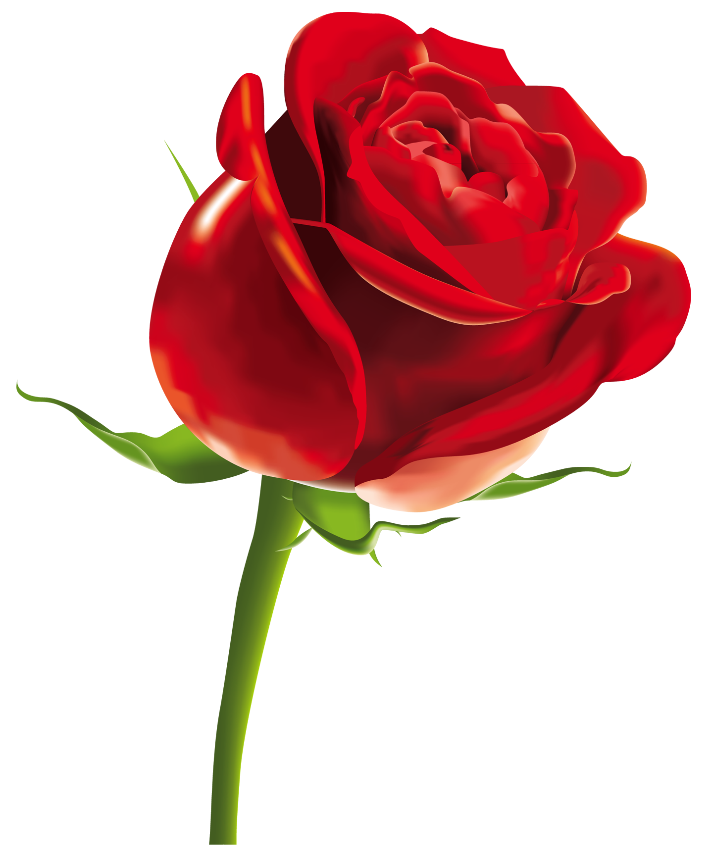 Red Flower clipart nice view #14