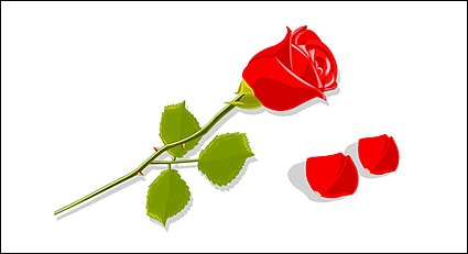 Red Rose clipart logo #10