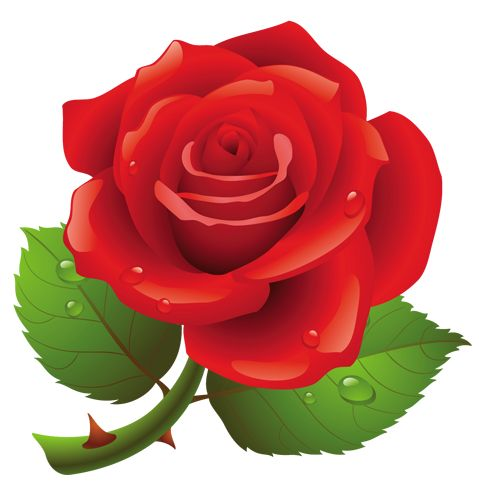 Red Rose clipart printable #15