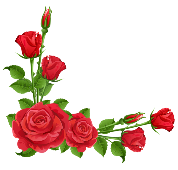 Red Rose clipart rose border #7