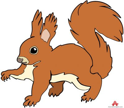 Red Squirrel clipart Images Squirrel clipart the clipart
