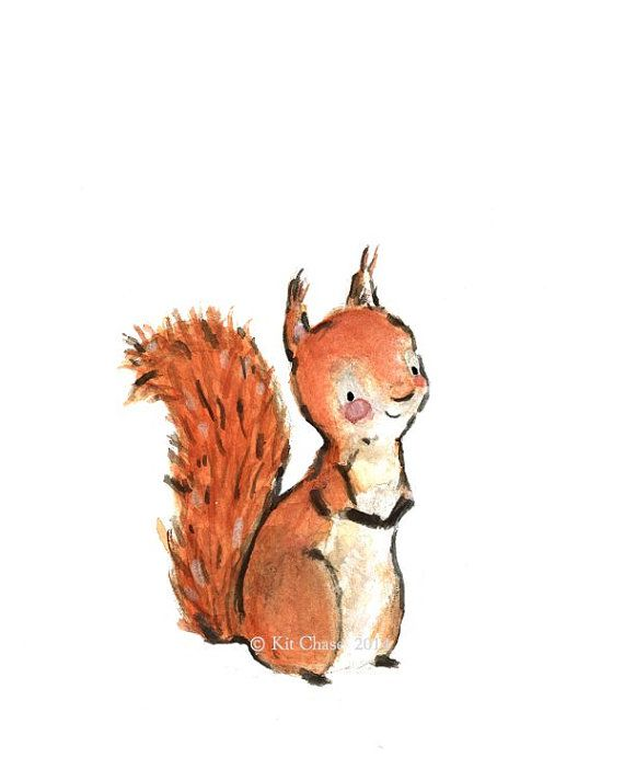 Red Squirrel clipart living thing #5