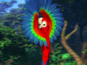 Red-and-green Macaw clipart Green Macaw Download and coloring