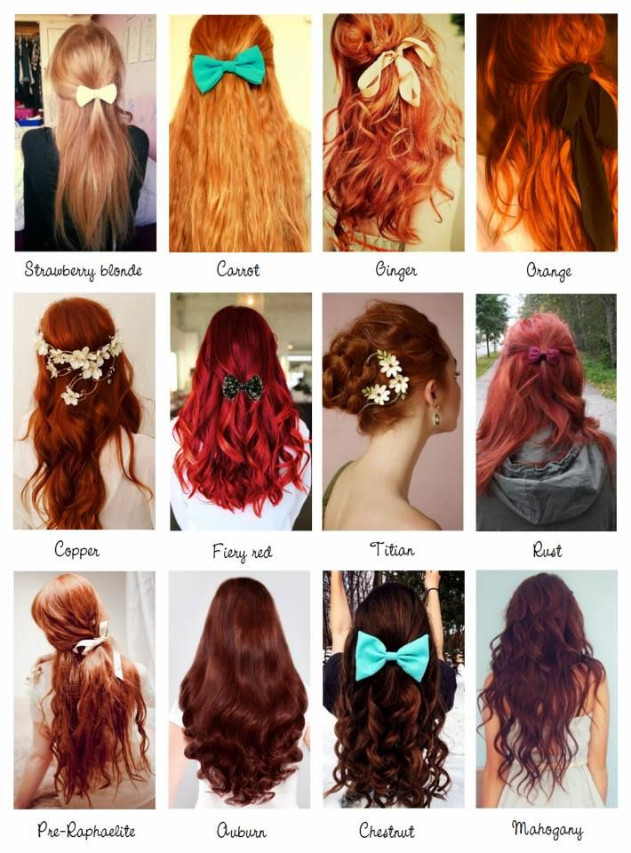 Redhead clipart hair color Pinterest definition which Best colour