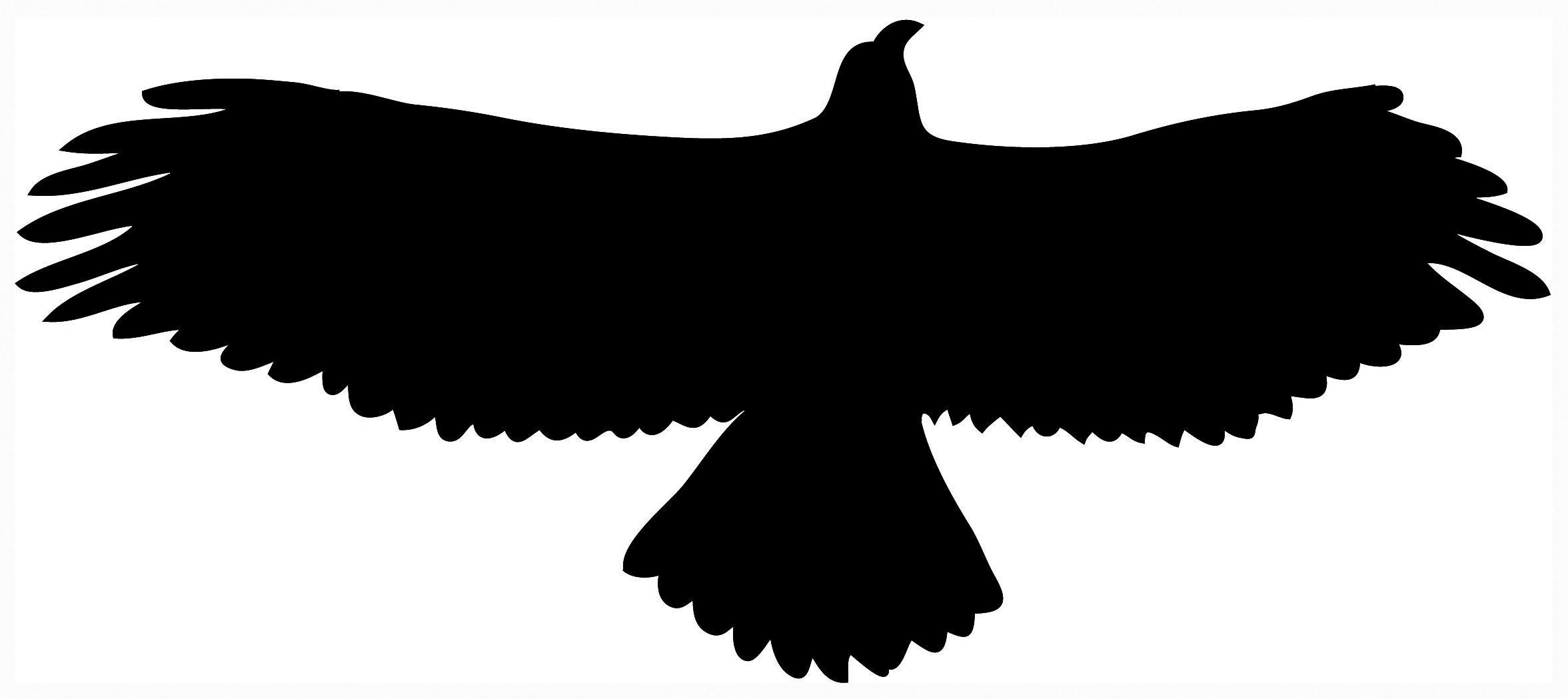 Black Eagle clipart silhouette Hawk Clip 93 Free Clipart