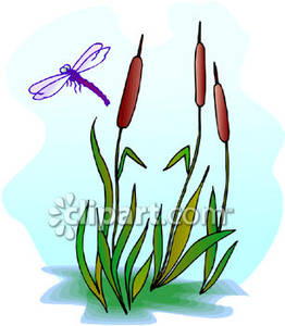 Reed clipart nature cartoon Download Art Clip Clip Reed