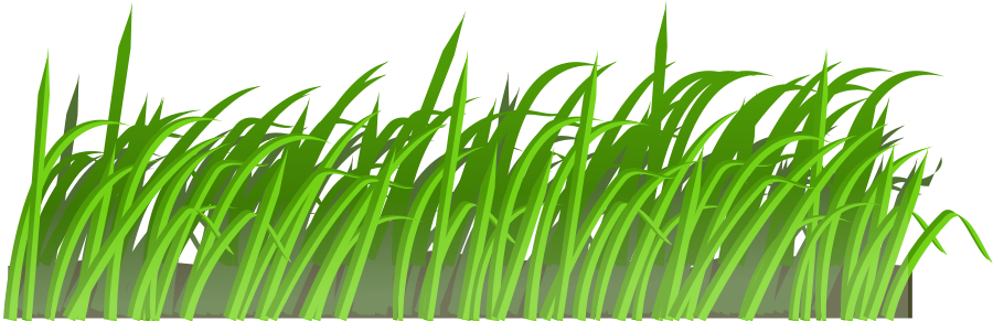 Reed clipart #13