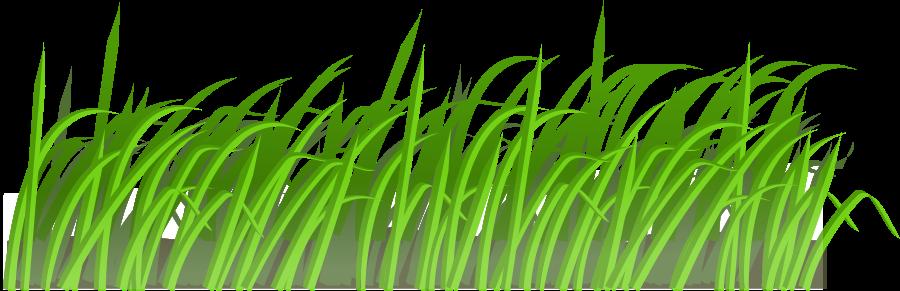 Reed clipart sun background Clip – Art Grass Art