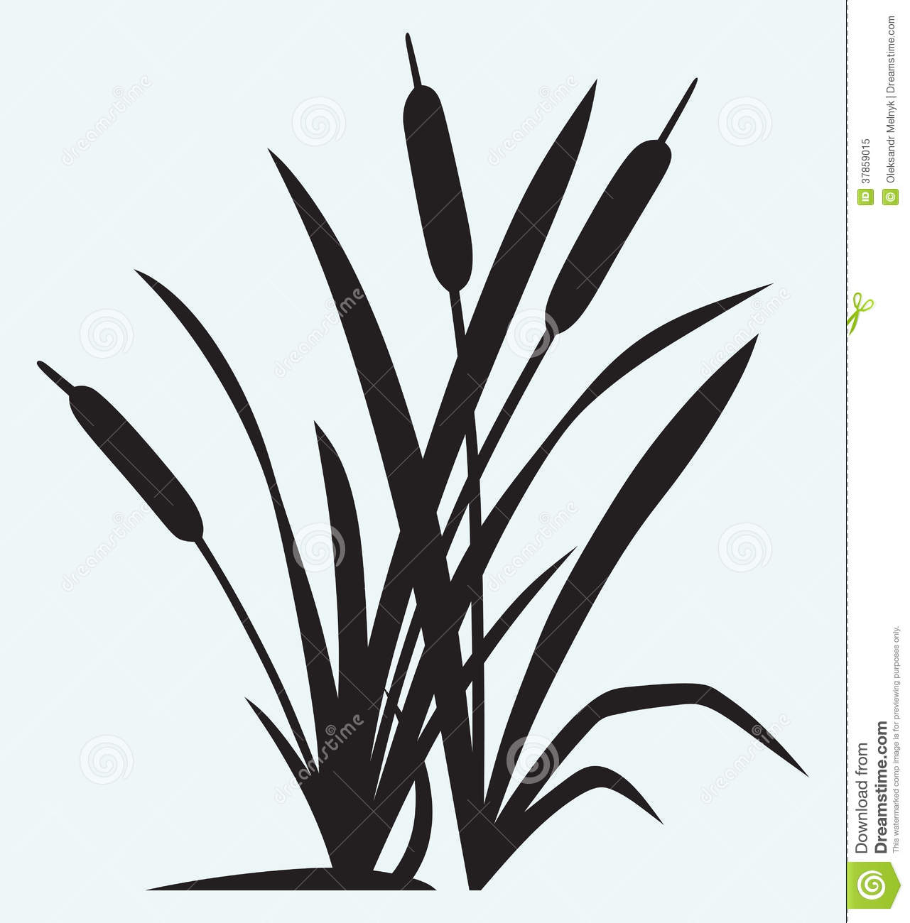 Reed clipart nature cartoon Clipart Reed Panda Clipart Clipart