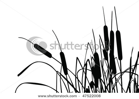 Reed clipart black and white White Images Black Grass White