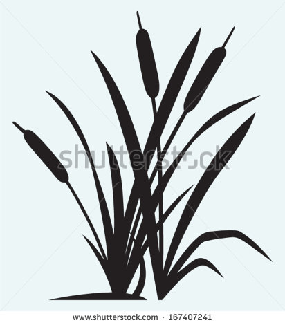 Black & White clipart hindu wedding Art and Clip Cattails Bay