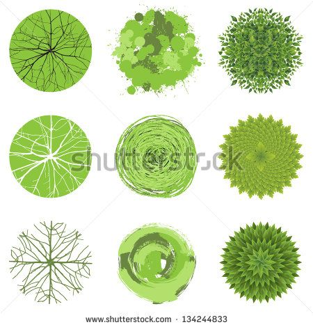 Reed clipart landscape design This about Pinterest on best