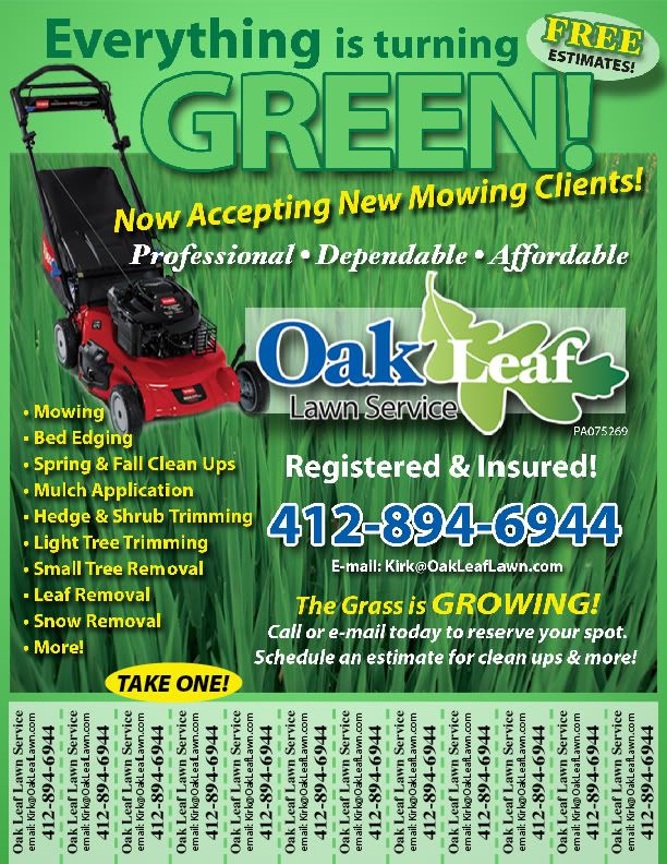 Reed clipart lawn care 38 My Lawn Flyers Ideas