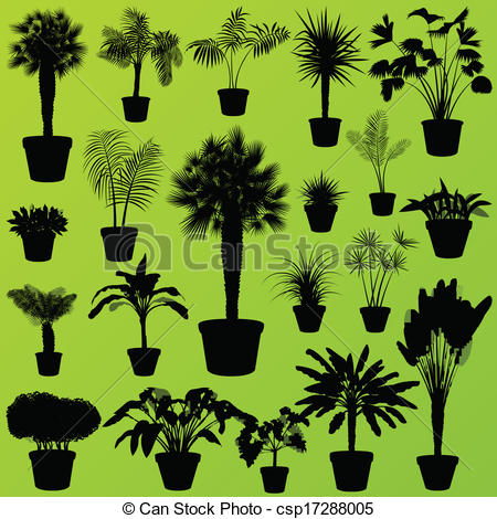 Reed clipart tree grass Exotic tree grass palm wild