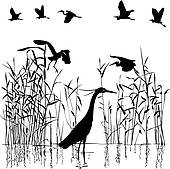 Reed clipart wetland Egrets image · GoGraph Royalty