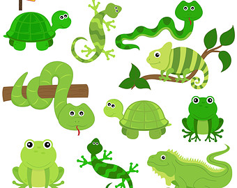 Reptile clipart #3