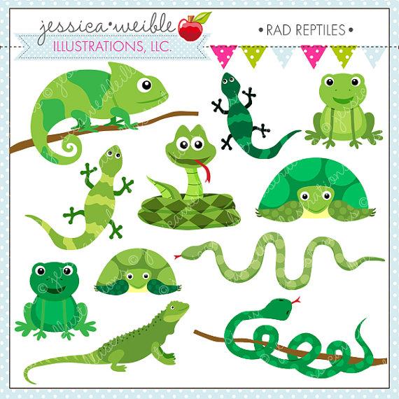 Reptile clipart #14