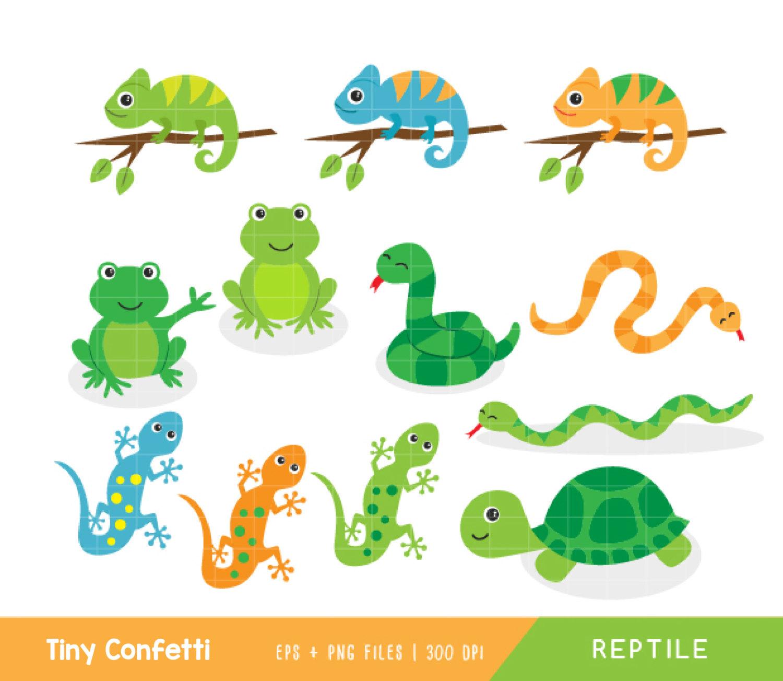 Sea Turtle clipart reptile #6