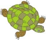 Reptile clipart #2